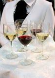 Het proeven van de wijn Stock Afbeelding