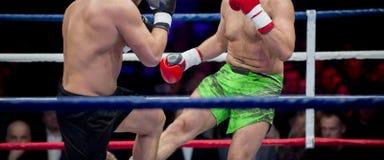 Het professionele bokser twee in dozen doen Strijdsport stock foto's