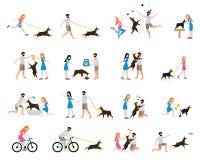 Het professionele hond lopen Stock Fotografie