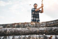 Het professionele sterke houthakkerswerk aangaande zaagmolen en zagende grote boom met bijl royalty-vrije stock foto's