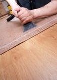 Het professionele tapijt schoonmaken Royalty-vrije Stock Afbeeldingen