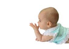 Het profiel van de baby royalty-vrije stock foto's