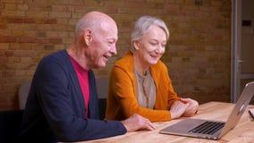 Het profielportret van twee hogere grijs-haired Kaukasische collega's die video hebben nodigt binnen laptop uit die blij en vrien stock videobeelden