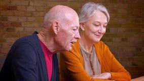 Het profielportret van twee hogere grijs-haired Kaukasische echtgenoten spreekt binnen in videochat op laptop die blij en vriends stock video