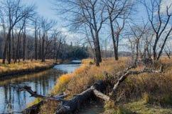 Het provinciale Park van de vissenkreek Royalty-vrije Stock Fotografie