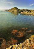 Het punt van Craignish, Argyll, Schotland Royalty-vrije Stock Foto's
