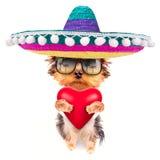 Het puppyhond van de minnaarvalentijnskaart met een rood hart Stock Foto's
