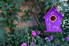 Het purpere die vogelhuis hangen op een boom door petuniabloemen wordt omringd stock afbeelding