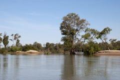 Het Ramsar-moerasland overstroomde bos in het binnen droge seizoen royalty-vrije stock foto's