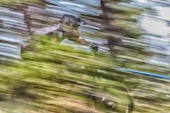 Het Ras van de de Bergfiets van Oregon Enduro Royalty-vrije Stock Fotografie
