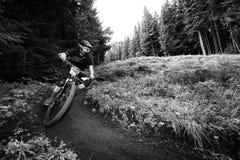 Het Ras van de de Bergfiets van Oregon Enduro Royalty-vrije Stock Afbeelding