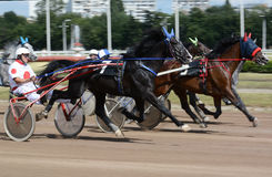 Het ras van de paardendraver in motie Abstract onduidelijk beeld Royalty-vrije Stock Afbeeldingen