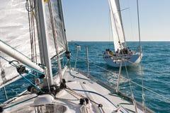 Het ras van de zeilboot Royalty-vrije Stock Foto