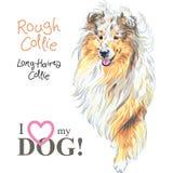 Het rassenvector van de hond Ruwe Collie royalty-vrije illustratie