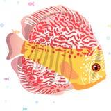 Het realistische aquarium met gouden vissen op een houten plankenaffiche en de titel maken tot een wens vectorillustratie Stock Afbeelding