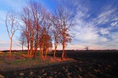 Het recente Landschap van de Herfst Stock Foto