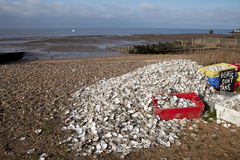 Het recycling van de oester in Whitstable, Stock Fotografie