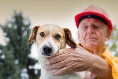 Het redden van hond stock afbeelding
