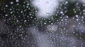 Het regenen op glasvenster Inbegrepen geluid van regen stock footage
