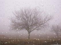 Het regent Stock Afbeelding