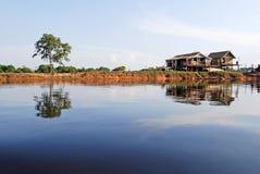 Het regenwoud van Amazonië: Regeling op de kust van de Rivier van Amazonië dichtbij Manaus, Brazilië Zuid-Amerika Stock Fotografie