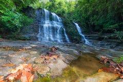 Het regenwoudwaterval van Borneo, idyllische stroom die in de weelderige groene wildernis van het Nationale Park van Kubah, Saraw Royalty-vrije Stock Afbeeldingen