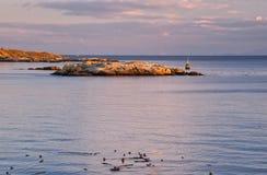 Het regionale Park van het Punt van Saxe, de haven van Victoria, BC royalty-vrije stock foto's