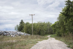 Het registreren sleep die door het bos winden royalty-vrije stock afbeelding