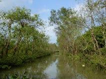 Het reizen door boot door de Mekong rivier deltavietnam Stock Foto