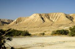 Het reizen door de woestijnen van Israël Royalty-vrije Stock Fotografie