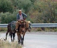 Het reizen door ezel Royalty-vrije Stock Fotografie