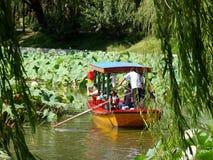 Het reizen in een boot onder de lotusbloem Stock Fotografie