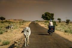 Het reizen van de cyclus in India royalty-vrije stock foto