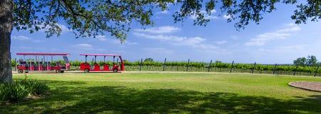 Het reizen van de Wijnmakerij Stock Afbeeldingen