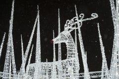 Het rendier bij verrukt Kerstmis Licht Labyrint en Markt Stock Foto's