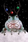 Het Rendier van Froggy stock afbeelding