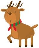 Het rendier van Kerstmis Stock Foto's