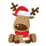 Het rendier van Kerstmis in de rode hoed van de Kerstman `s Royalty-vrije Stock Foto
