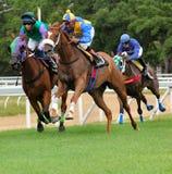 Het rennen Royalty-vrije Stock Foto