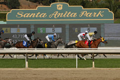 Het rennen in Historische Santa Anita Park Royalty-vrije Stock Foto's