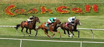 Het rennen onderaan een Mooi Spoor van het Gras Royalty-vrije Stock Fotografie