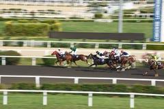 Het rennen Paard in de Pan van de de Concurrentiemotie royalty-vrije stock afbeelding