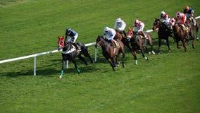 Het Rennen van Horce Royalty-vrije Stock Afbeeldingen