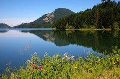 Het Reservoir van Dorena Royalty-vrije Stock Foto's