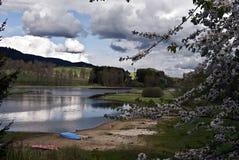 Het reservoir van het Lipnowater met bloesem, zandig strand en aardige hemel stock foto