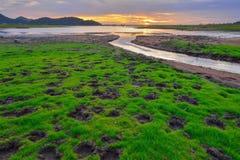Het reservoir van klapphra Royalty-vrije Stock Foto