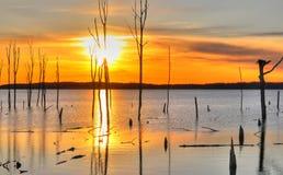 Het reservoir van Manasquan Royalty-vrije Stock Afbeelding
