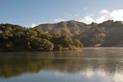 Het Reservoir van Uvas Stock Fotografie