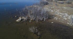 Het Reservoiroever van de Hubbardkreek Stock Foto