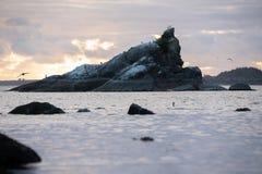 Het reuzerotsvorming plakken uit vreedzame oceaan royalty-vrije stock afbeeldingen